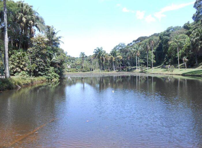 Jardim Botânico de São Paulo - Lago