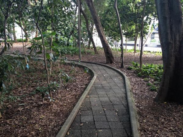 Pista para caminhadas no parque Mário Covas