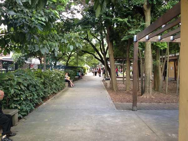 Pergolado no parque Mário Covas - Avenida Paulista