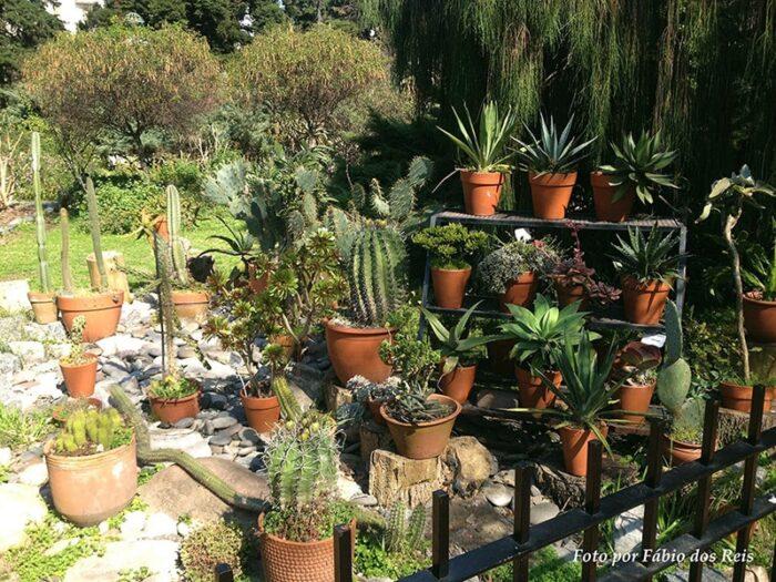 Jardim de Cactos e Suculentas no Jardim Botânico da cidade de Buenos Aires