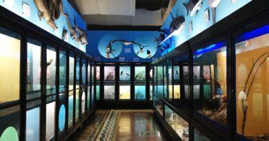 Sala Principal do Museu Zoológico de Montevidéu - Uruguai