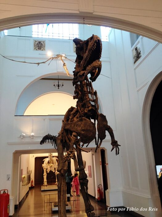 tyranosaurus rex no museu de zoologia da usp