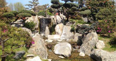 Cascata no jardim japonês de buenos aires