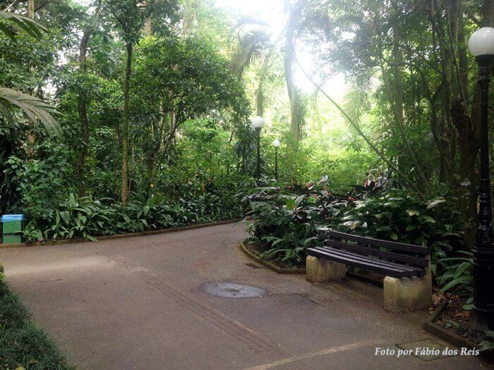 Um dos muitos caminhos de passeio do orquidário