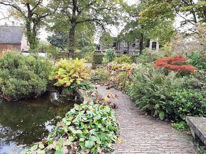 Caminho no Hortus Botanicus Leiden - Holanda