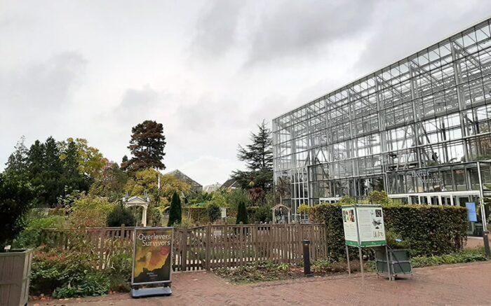 Pátio de entrada do Hortus Botanicus, com o Jardim de Inverno à direita