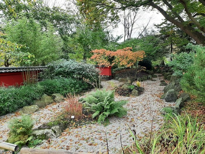 Jardim Japonês no Hortus Botanicus de Leiden - Holanda