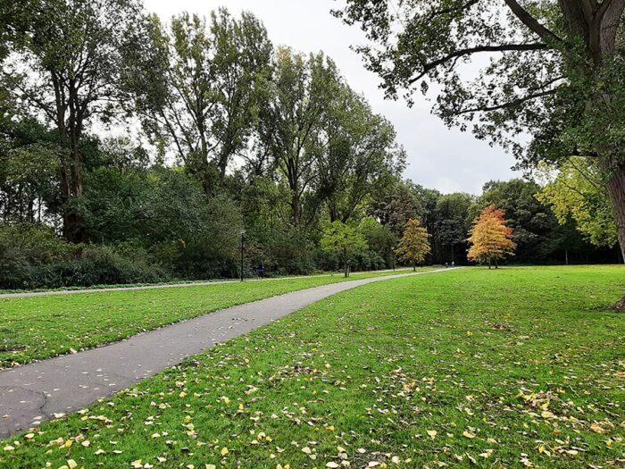 Detalhe de uma trilha no parque Sloterpark