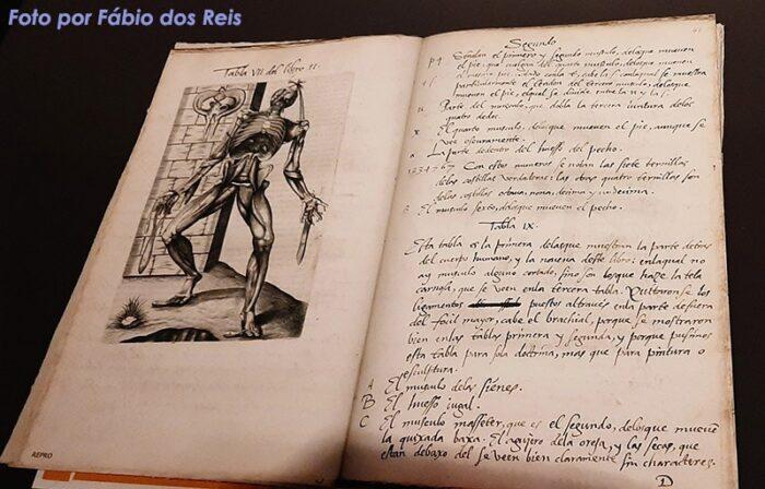 """Manuscrito """"Vivas Figuras"""" de Joannes Valverde"""