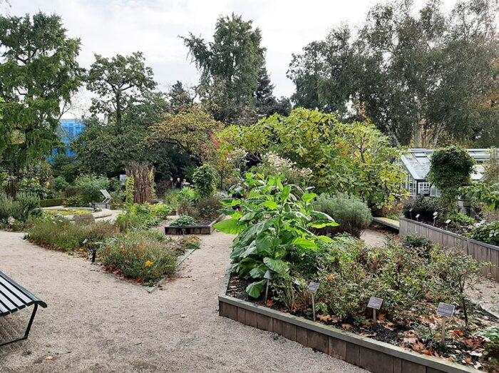 Um dos Jardins externos no Hortus Amsterdam